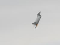 airpower09_g-68